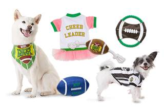 Puppy Bowl Gift Pack